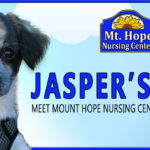 Jasper Blog header 150x150 - Woof and Happy Holidays, everyone!