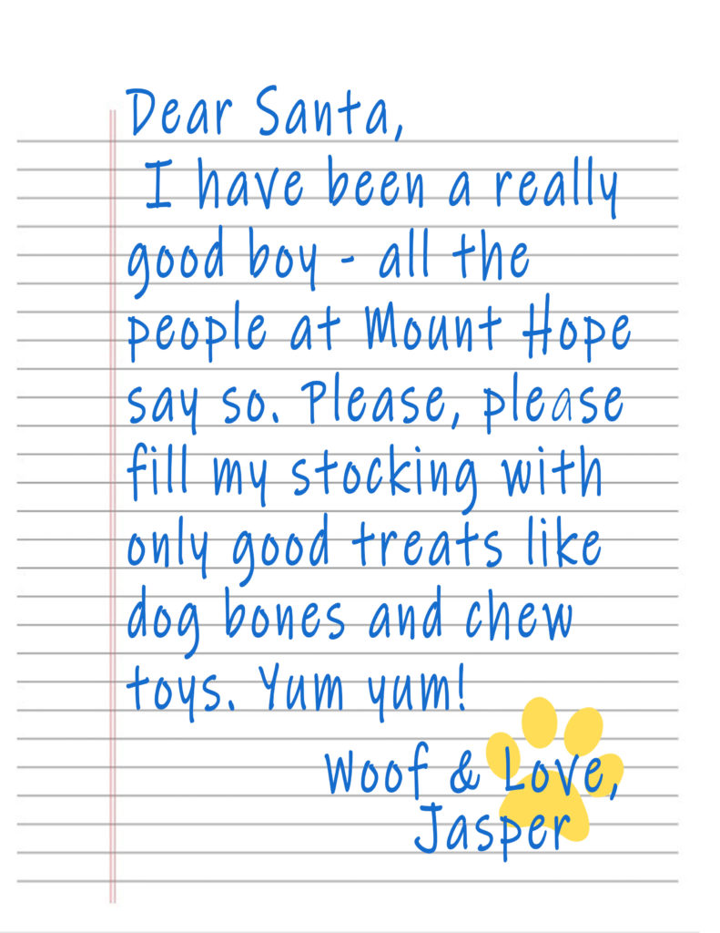 Jasper Santa Letter 791x1024 - Woof and Happy Holidays, everyone!