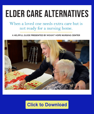 Cover of guide for Nursing Home Alternatives to Elder Care